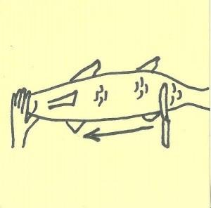 fish3