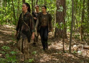 twd-706-attemptedexecutionontara